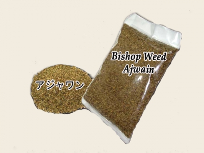 アジョワン BISHOP WEED (ajwain)